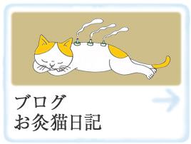 ブログお灸猫日記