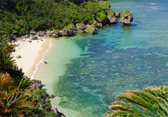 沖永良部島風景の写真